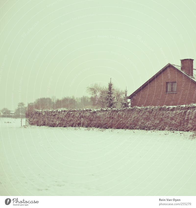 Winter house Environment Nature Landscape Snow House (Residential Structure) Moody Serene Calm White Subdued colour Exterior shot Deserted Copy Space right