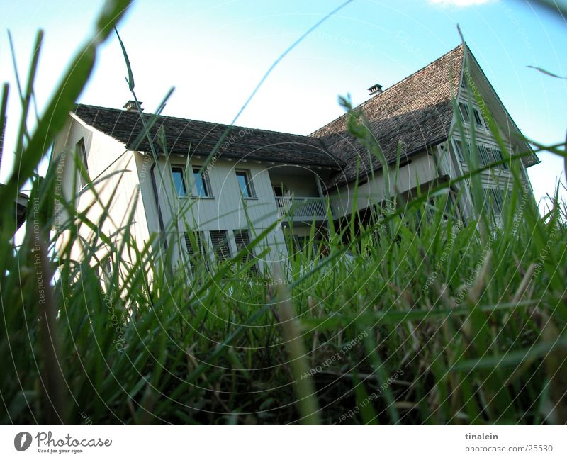 Swiss country idyll Farm Switzerland Meadow Grass Green House (Residential Structure) Architecture Americas Sky Nature Perspective