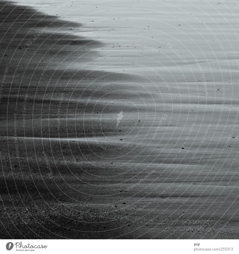 grey zone Sand Water Coast Ocean Surrealism Stripe Damp Wet Dry Low tide Shallow Beach North Sea Black & white photo Exterior shot Detail Abstract Pattern