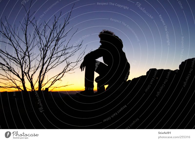 and now wait... Far-off places Masculine 1 Human being Landscape Sky Horizon Sun Sunrise Sunset Tree Think Sit Emotions Longing Loneliness thinkers shrub