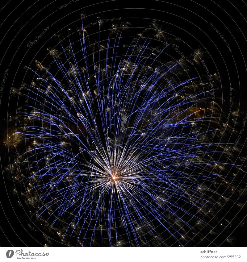 Blue Beautiful Feasts & Celebrations Star (Symbol) New Year's Eve Firecracker Night life Bang Explode Pyrotechnics National Day