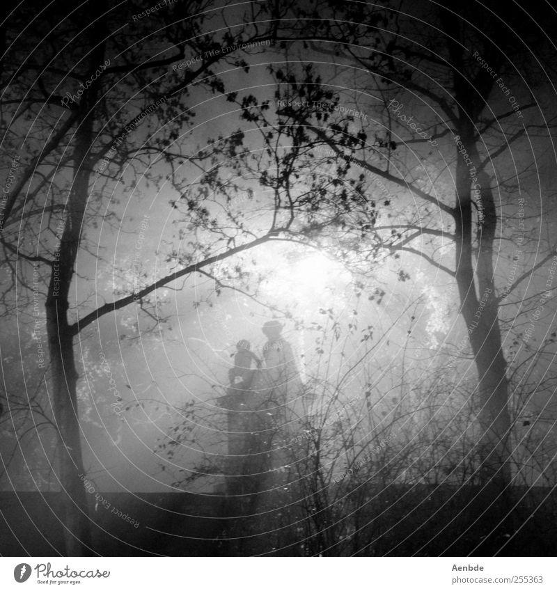 "<font color=""#ffff00"">-=let´s=- sync:ßÇÈâÈâ Tree Creepy Stone statue Romance Dark Monster Fog Black & white photo Exterior shot Experimental Night"