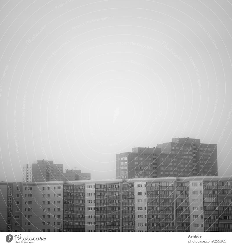 City Loneliness House (Residential Structure) Berlin Architecture Building Facade High-rise Gloomy Skyline Capital city Prefab construction Hideous
