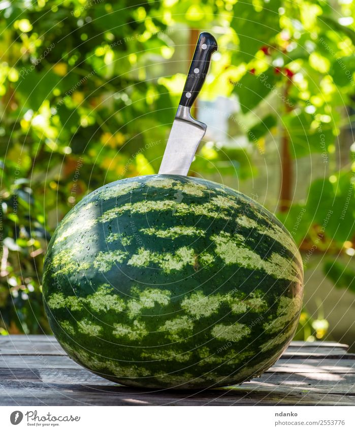 green round watermelon Fruit Dessert Nutrition Vegetarian diet Diet Knives Summer Nature Eating Fresh Delicious Natural Juicy Green Colour Water melon knife
