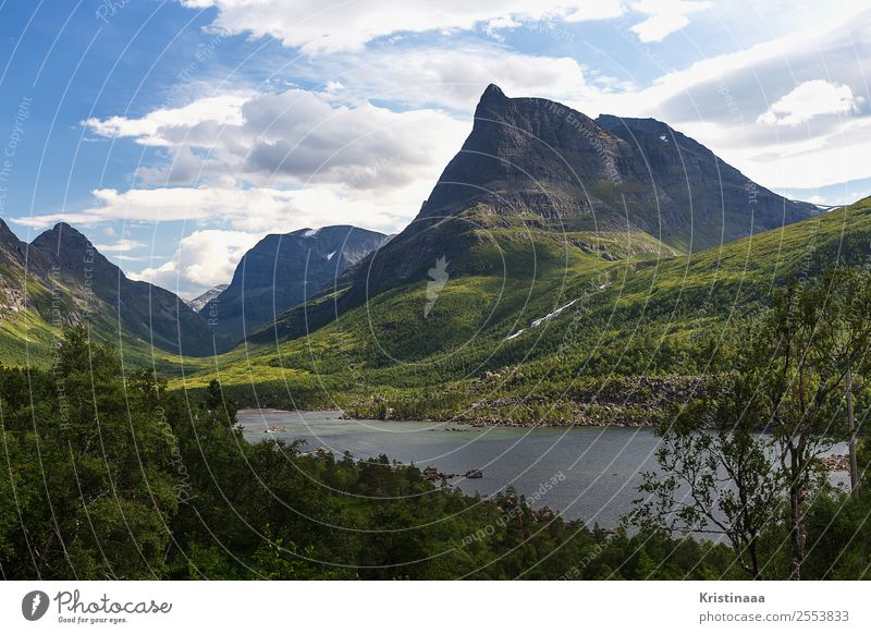 Innerdalen Fishing (Angle) Hunting Vacation & Travel Tourism Trip Adventure Far-off places Freedom Camping Hiking Nature Landscape Plant Water Sky Clouds Summer