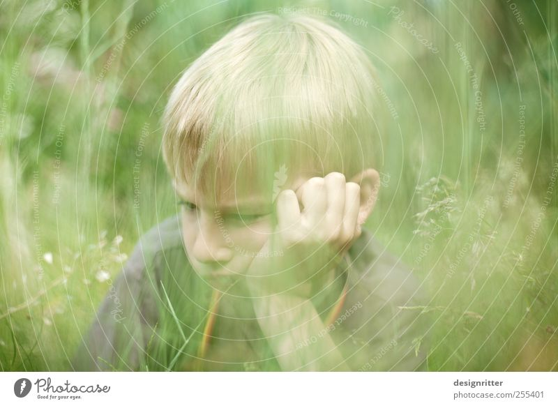 Human being Loneliness Meadow Boy (child) Grass Garden Sadness Infancy Blonde Grief Anger Hide Boredom Aggravation Frustration Rebellious