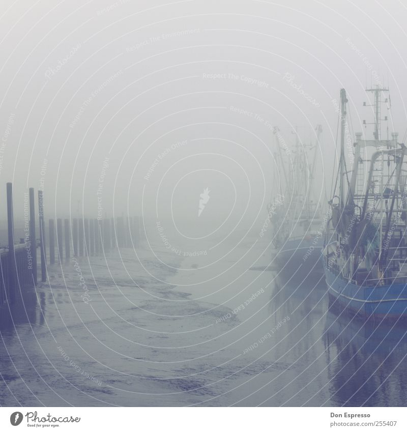 cloudy weather Water Autumn Bad weather Gale Fog Coast North Sea Fishing village Harbour Navigation Inland navigation Fishing boat Watercraft Anchor Lie Wait