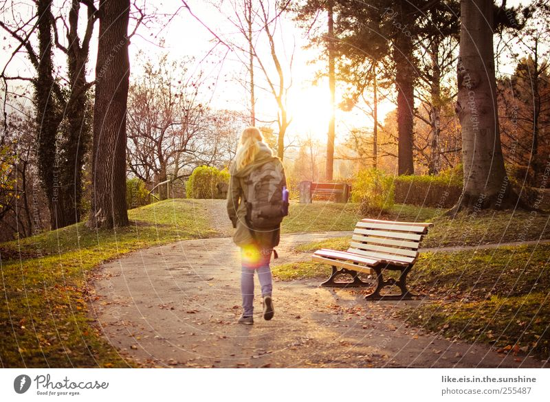 Human being Woman Youth (Young adults) Tree Loneliness Calm Adults Relaxation Meadow Autumn Life Landscape Grass Warmth Garden Dream