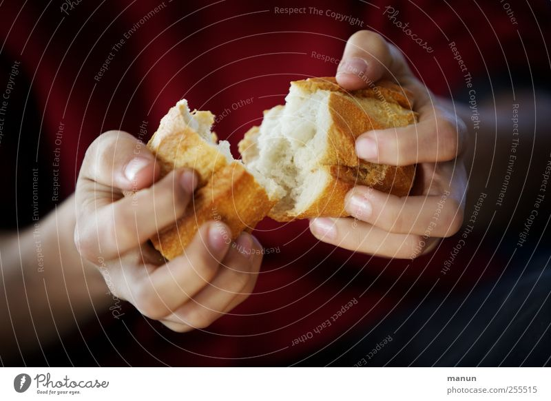 Hand Eating Natural Food Authentic Fingers Nutrition Simple Touch To hold on Appetite Division Make Organic produce Bread To break (something)