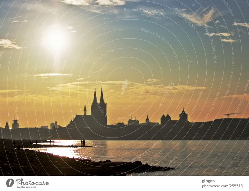 You want it to rain in the sky! Cologne Cologne Cathedral Town Downtown Church Dome Authentic Rhine River bank Low water Beautiful weather Friendliness Autumn