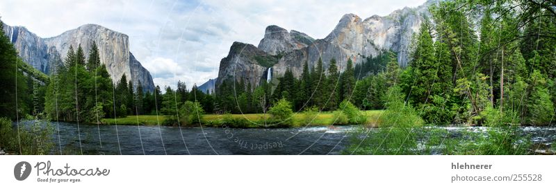 El Capitan Yosemite Nation Park Beautiful Vacation & Travel Tourism Freedom Summer Mountain Environment Nature Landscape Sky Clouds Tree Grass Meadow Forest