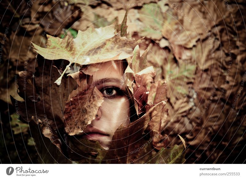 Woman Leaf Loneliness Eyes Emotions Whimsical Bouquet Exhaustion Covered Rachis Guilty Leaf green Flower Leaf filament Leaf shade