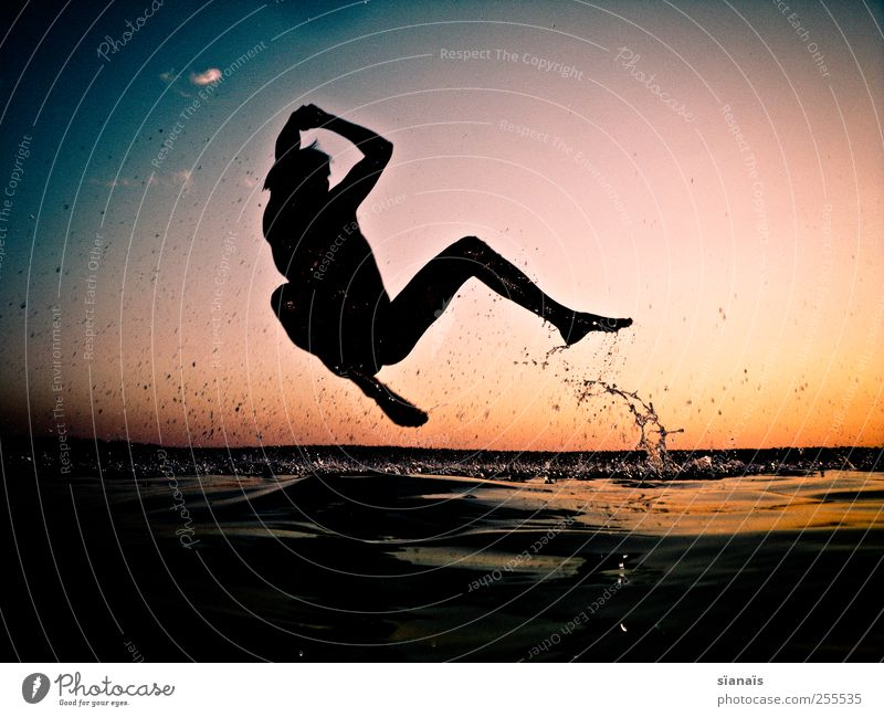 Human being Man Water Summer Joy Adults Life Playing Jump Lake Horizon Swimming & Bathing Leisure and hobbies Masculine Drops of water To fall