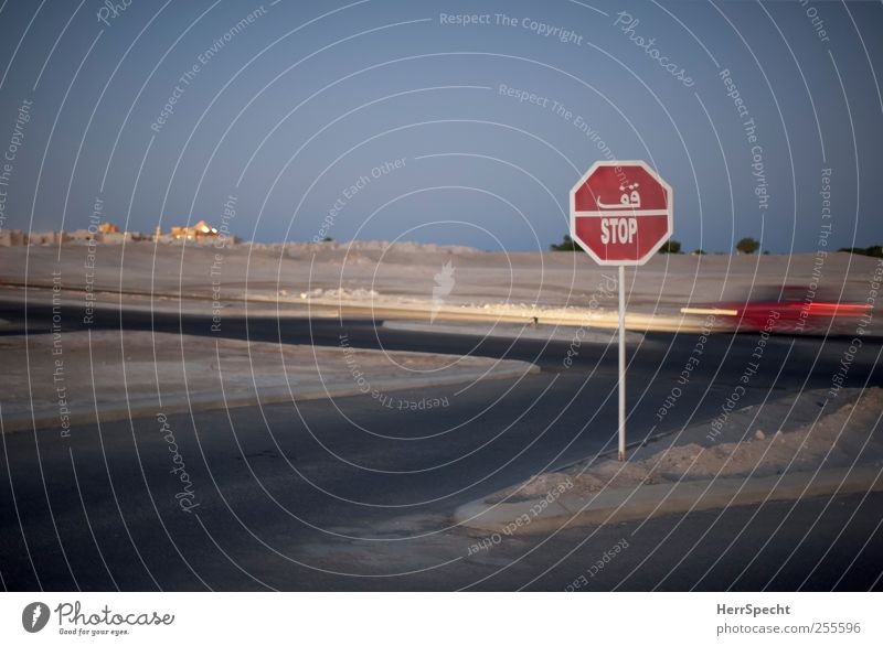 You better stop Nature Landscape Sand Desert Transport Motoring Street Crossroads Road sign Vehicle Car Sign Characters Driving Blue Gray Red Arabic script