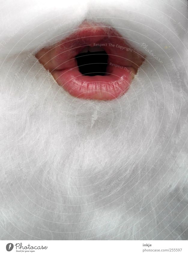 OH Christmas & Advent Santa Claus Masculine Androgynous Adults Senior citizen Life Mouth Lips 1 Human being White-haired Facial hair Beard Communicate Make