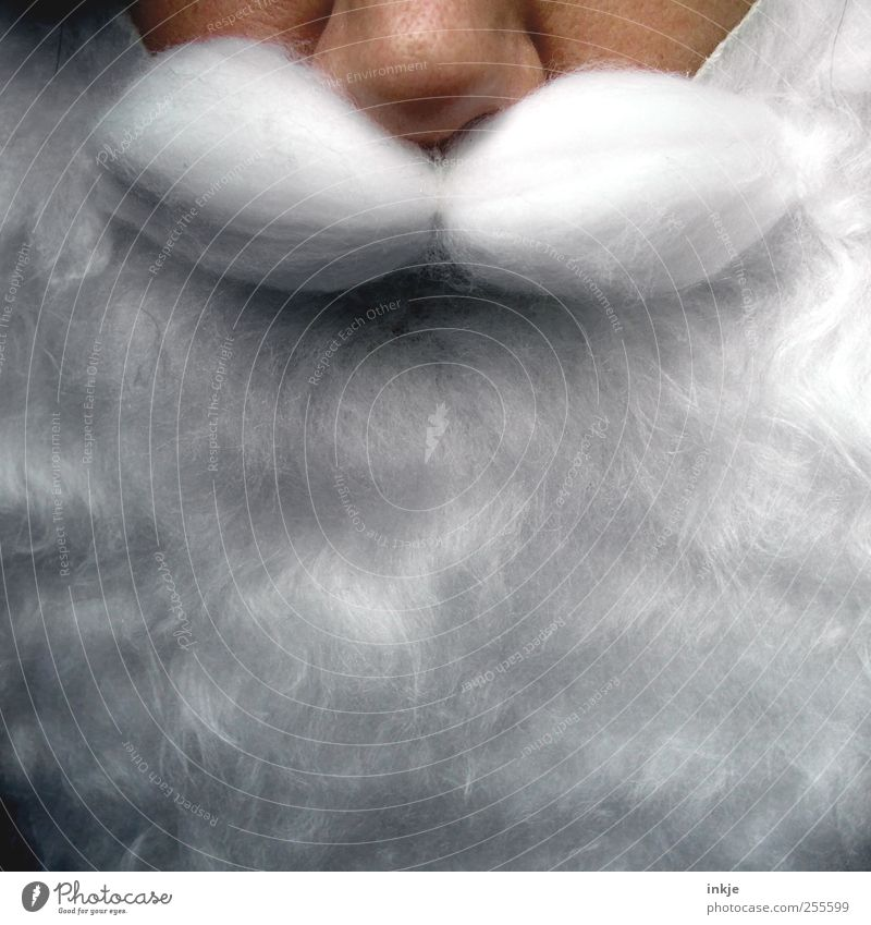 Full Beard Leisure and hobbies Christmas & Advent Androgynous Adults Senior citizen Life Face Facial hair 1 Human being Exceptional Kitsch Near White Emotions
