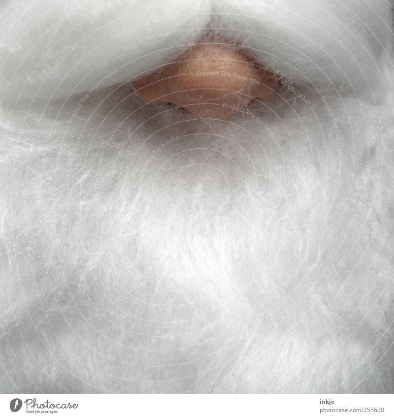Rudolph Leisure and hobbies Christmas & Advent Santa Claus Androgynous Adults Senior citizen Life Nose Facial hair 1 Human being White-haired Beard Exceptional