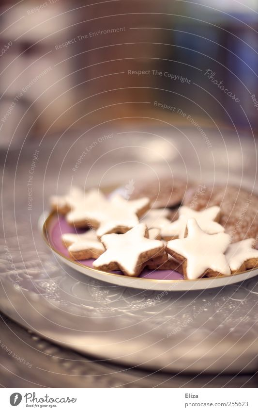 Christmas & Advent Beautiful Nutrition Delicious Baked goods Cookie Gingerbread To have a coffee Star cinnamon biscuit