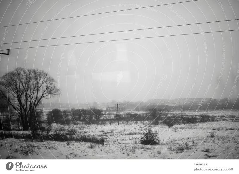 Snow Landscape Transport Railroad Fear of the future Boredom Passenger traffic Bad weather Means of transport Train travel Public transit