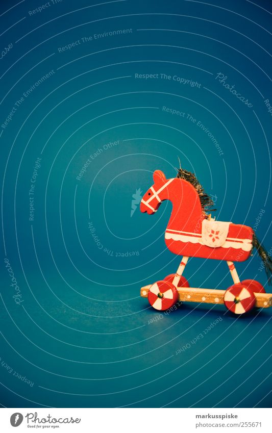 christmas decoration Living or residing Flat (apartment) Arrange Interior design Decoration Feasts & Celebrations Christmas & Advent Horse Ponytail Horse's head