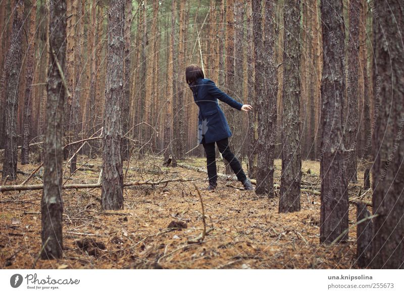 of searching and being found Young woman Youth (Young adults) Woman Adults 1 Human being Environment Nature Plant Tree Forest Coniferous forest Spruce forest