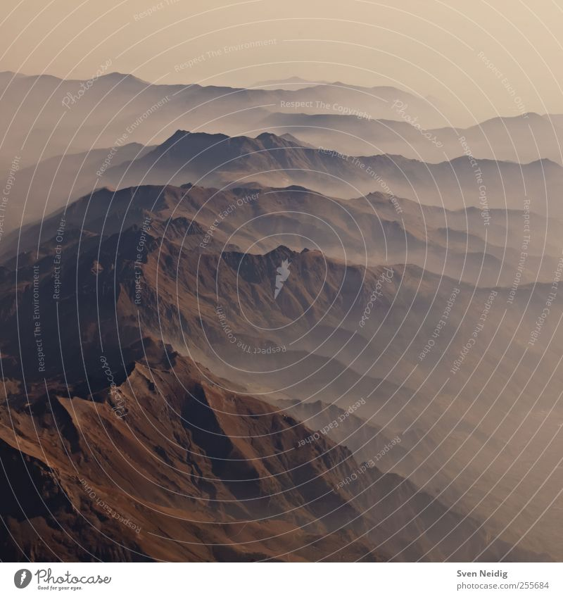 the Sea of Fog III Landscape Earth Alps Mountain Peak Blue Brown Yellow Sublime Infinity Structures and shapes Subdued colour Aerial photograph Deserted Dawn