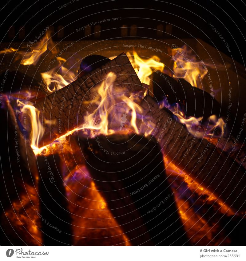 Come on Baby Elements Fire Illuminate Glittering Hot Yellow Gold Red Black Fireplace Heat Wood Flame Colour photo Exterior shot Detail Deserted Copy Space top