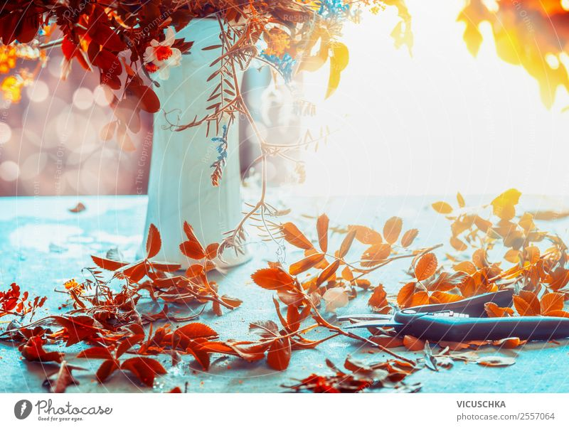 autumn leaves, vase and scissors on the table Lifestyle Style Design Living or residing Flat (apartment) House (Residential Structure) Dream house Garden