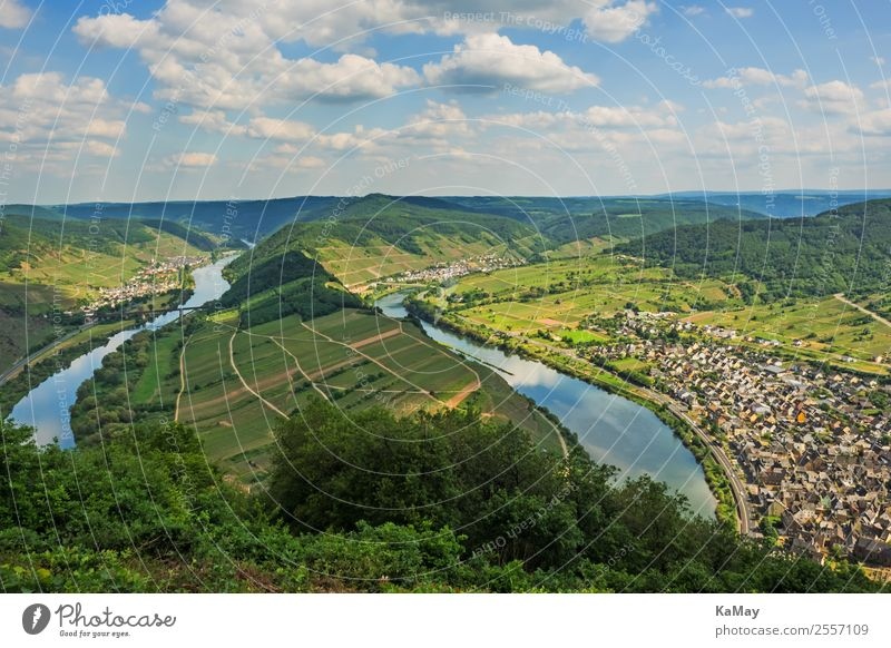 Moselle loop at Bremm Nature Landscape Water Hill River brake Germany Europe Village Small Town Green Vacation & Travel Environment Vineyard Wine growing