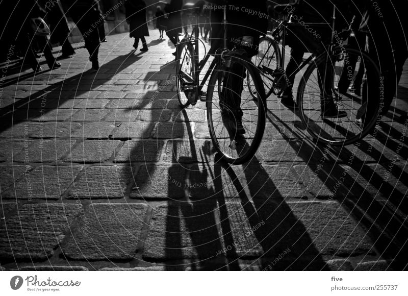Human being City Vacation & Travel Group Legs Moody Feet Bicycle Going Masculine Trip Places Adventure Tourism Cobblestones Crowd of people