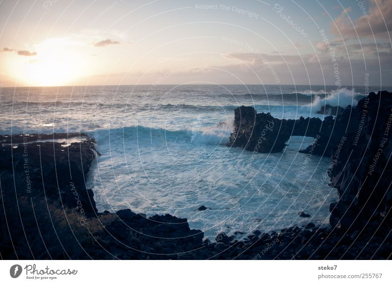 sinks Sky Sunrise Sunset Waves Coast Ocean Horizon Far-off places Canaries Cliff Rock Surf Colour photo Exterior shot Deserted Copy Space top Evening Twilight