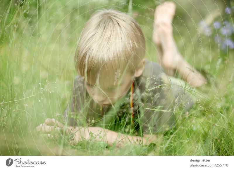 world explorer Human being Child Boy (child) Infancy Youth (Young adults) 3 - 8 years 8 - 13 years Lie Colour photo Exterior shot Copy Space left Day