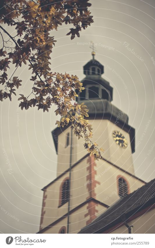 without words Autumn Plant Tree Leaf Small Town Old town Church Manmade structures Building Architecture Holy Church spire baroque Exterior shot Day Evening
