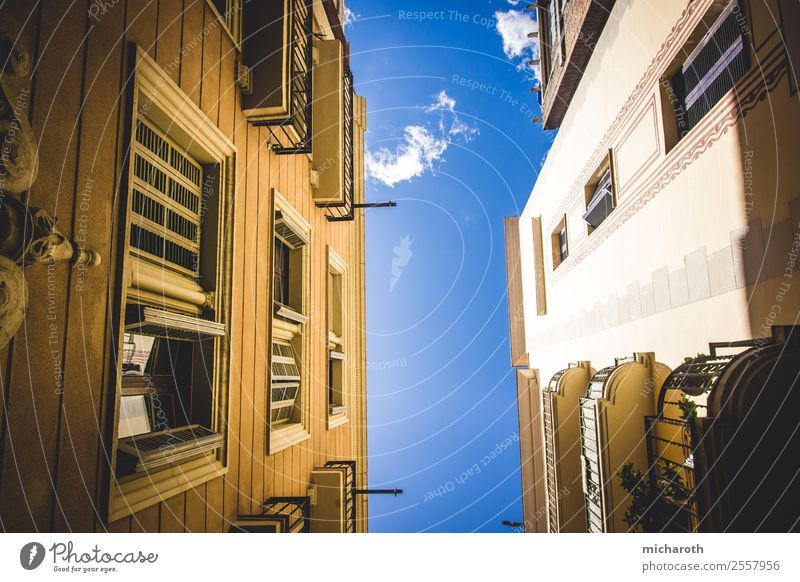 Looking Up Vacation & Travel Tourism Trip City trip Architecture Barcelona Spain Europe Town Capital city Downtown Old town Dream house Building Wall (barrier)