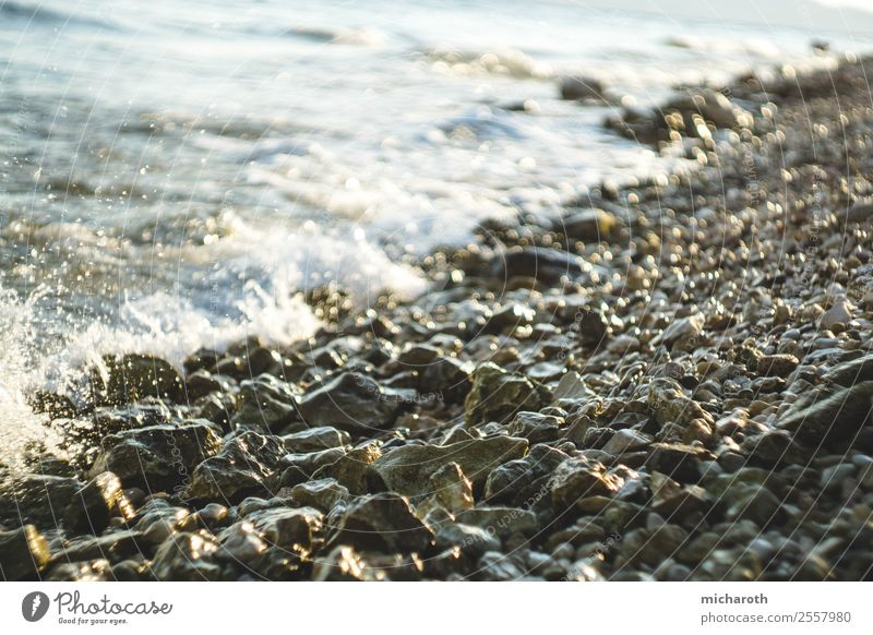 Rocky coast Vacation & Travel Tourism Adventure Freedom Summer Summer vacation Island Waves Environment Nature Climate Climate change Beautiful weather Wind