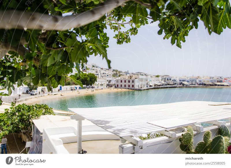 Mykonos Beach Lifestyle Shopping Leisure and hobbies Vacation & Travel Tourism Trip Sightseeing Cruise Summer Summer vacation Ocean Sky Beautiful weather Tree