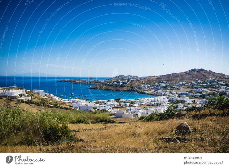 Mykonos Village Fishing (Angle) Vacation & Travel Tourism Trip Adventure Far-off places Freedom Sightseeing Summer vacation Ocean Landscape Plant Cloudless sky