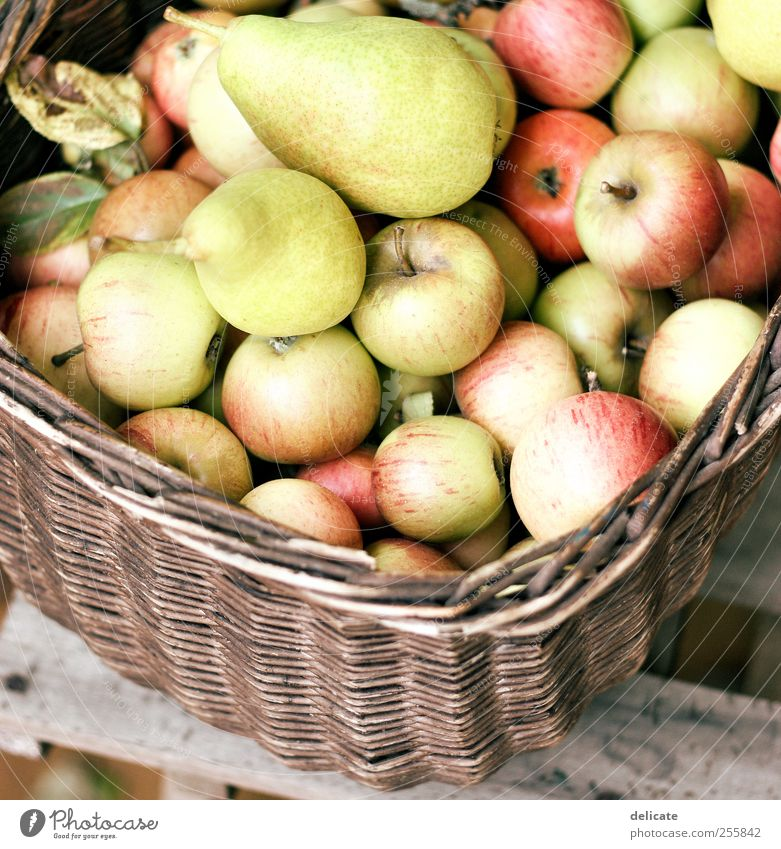 apple basket Fruit Apple Environment Nature Summer Autumn Plant Leaf Garden Box Hang Lie Healthy Delicious Sweet Brown Yellow Green Red Appetite Debauchery