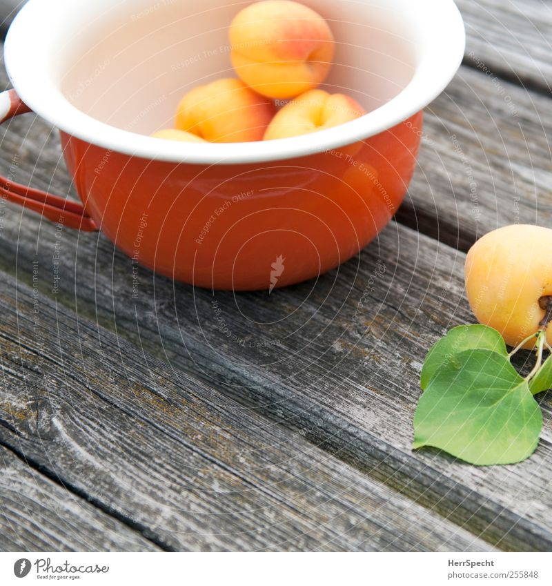 Apricots II Food Fruit Bowl Wood Metal Esthetic Fresh Delicious Yellow To enjoy apricot Vitamin Healthy Eating Wooden floor Colour photo Exterior shot