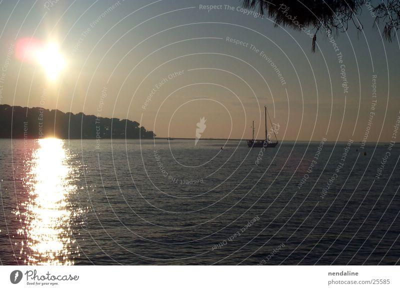 summer evening Sunset Lake Watercraft Sailboat Wals-Siezenheim Romance Reflection Sky land