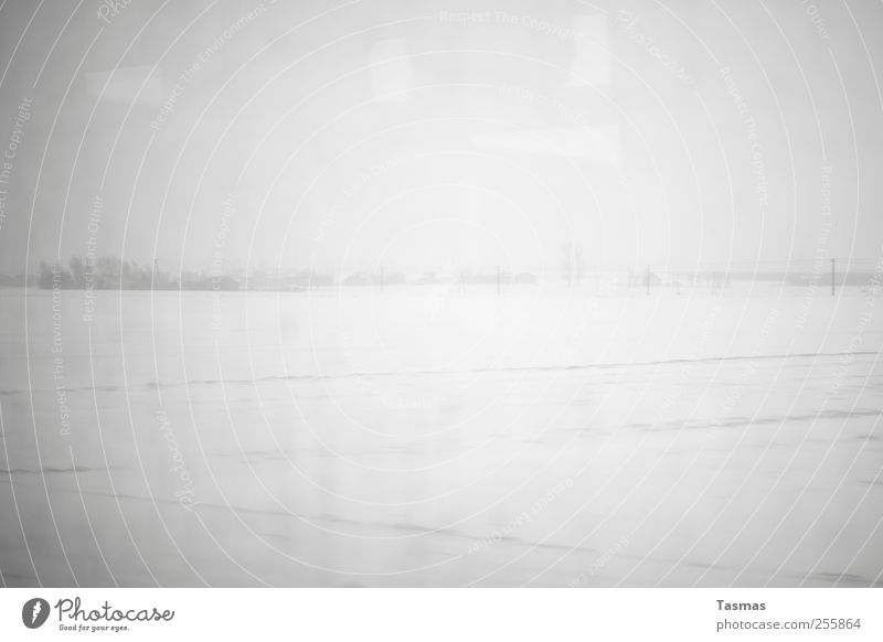 Winter Loneliness Cold Snow Landscape Horizon Authentic Gloomy Observe Boredom Bad weather Hideous Disappointment Homesickness Apocalyptic sentiment