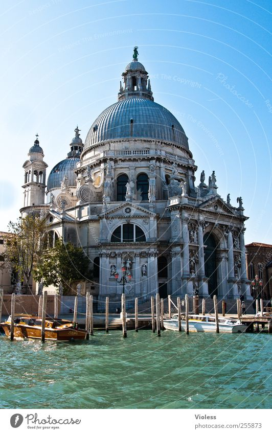 Santa Maria Della Salute Port City Downtown Old town Church Dome Manmade structures Building Architecture Tourist Attraction Monument Belief Religion and faith