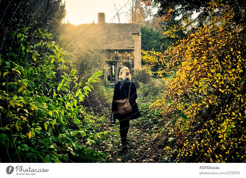 (K)a wonderland Young woman Youth (Young adults) 1 Human being 18 - 30 years Adults Nature Sun Autumn Bushes Wild plant Deserted Ruin Roof Chimney Coat Bag