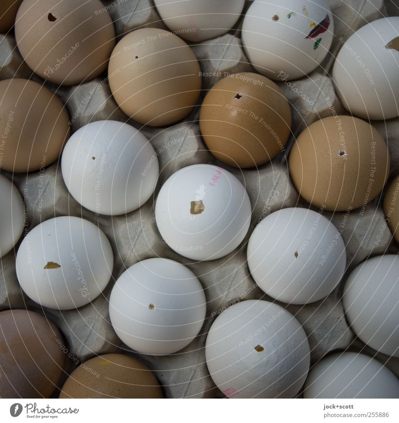 White Food Line Brown Arrangement Empty Round Culture Simple Easter Thin Creativity Diagonal Hollow Egg Collection