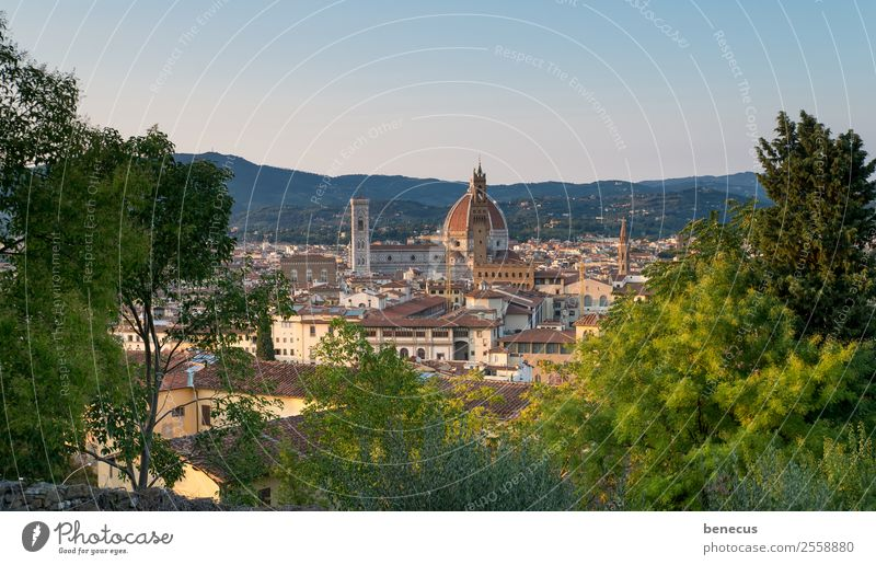 View of Florence Italy Europe Town Church Dome Tower Manmade structures Building Architecture Domed roof Tourist Attraction Landmark Beautiful Brown Green