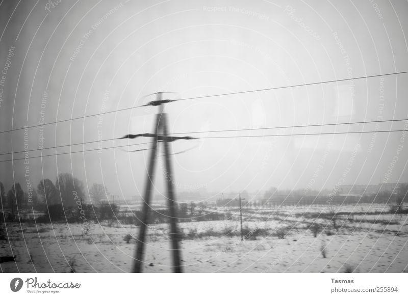 Grey finiteness Energy industry Electricity pylon Environment Landscape Bad weather Rail transport Train travel Passenger train Cold Gloomy Gray Sadness