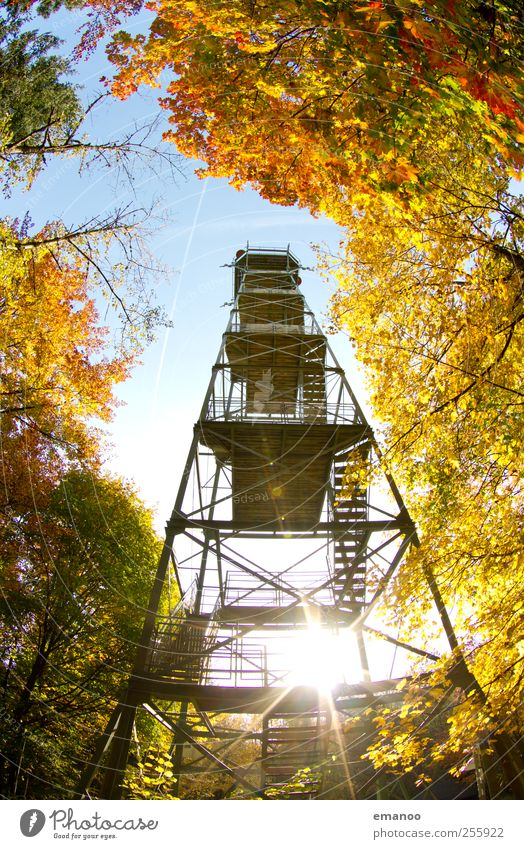 autumn outlook Vacation & Travel Tourism Trip Sightseeing Summer Sun Mountain Hiking Nature Landscape Sky Autumn Climate Weather Tree Leaf Forest Hill Tower