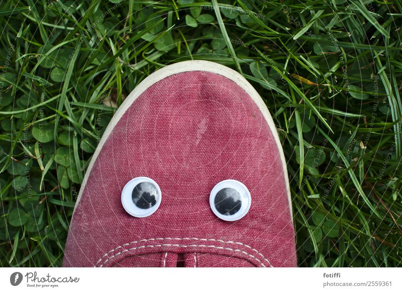 Wobble 1 Face Eyes Plant Grass Fantastic Footwear Red shaky eye Childish Childlike Insulted Exterior shot Looking into the camera