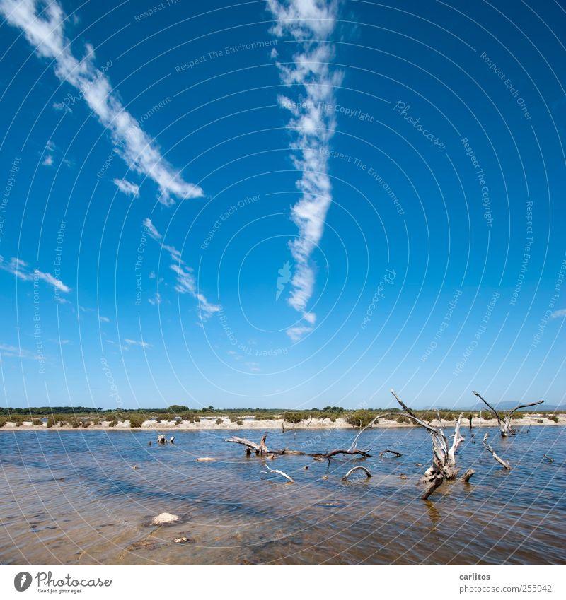 salt lake Air Water Sky Summer Warmth To dry up Salt Sea water Saltworks Wood Shriveled Bizarre Blue Brown White Green Landscape Mediterranean Majorca