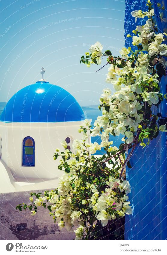 blue Vacation & Travel Tourism Sky Ocean Island Santorini Greece Village Old town House (Residential Structure) Church Wall (barrier) Wall (building) Roof